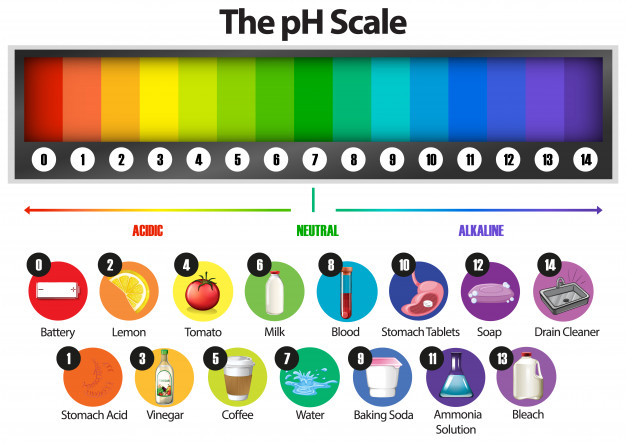 The pH Scale of different items